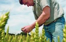 Peste 326 de milioane euro disponibili de luna aceasta pentru investiţii în mediul rural