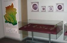 Programe educative pentru elevi la Muzeul Judeţean
