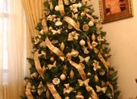 Unde şi cum petrec Crăciunul parlamentarii de Teleorman?