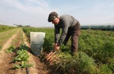 Întrunirea fermierilor cu secretarul de stat Botănoiu