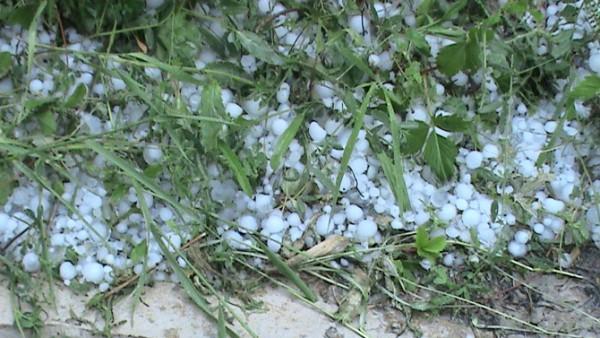 Mai multe localităţi din judeţ au fost afectate de grindină și ploi