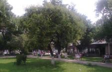 Sistem de radioficare şi adresare publică, în parcurile din municipiul Alexandria